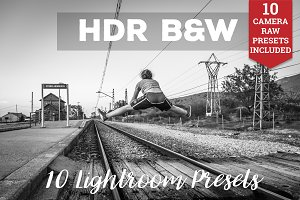 HDR Black and White Lightroom Preset