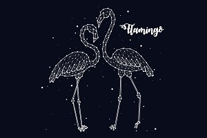 Constellation of flamingos