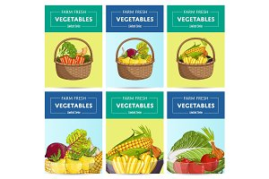 Farm fresh vegetable label set