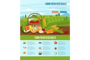 Farm fresh vegetable banner with rural landscape
