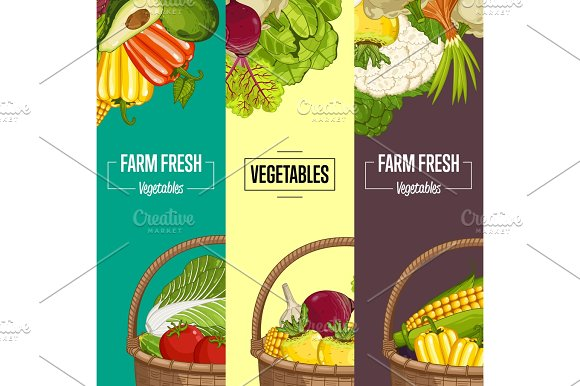 Organic Vegetable Farming Flyers Set