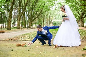 Brides and squirrel in the park