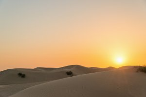 Dunes in desert at sunset