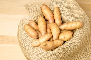 Fingerling potatoes in burlap sack