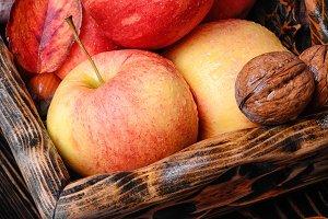 ripe autumn apples