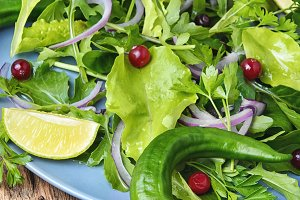 Leaf vegetable lettuce