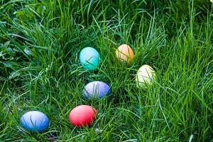 Dyed Easter eggs in a grassy lawn