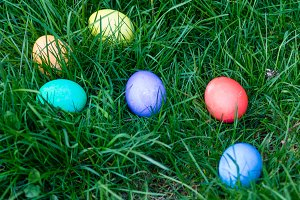 Easter eggs in a grassy lawn