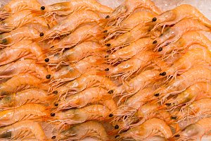fresh raw shrimps.