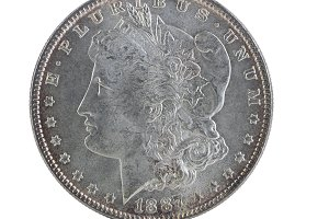 Toned Vintage Silver Dollar