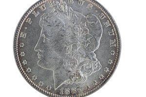 Toned Vintage Silver Dollar