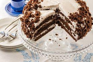 Chocolate crumb cake with white icing