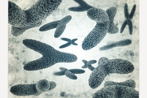 Chromosomes, gene mutation