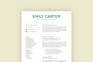 Professional Resume Template 08