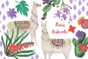 Watercolor llamas
