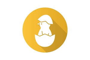 Newborn chicken flat design long shadow icon