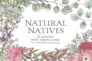 Natural Natives Watercolour Clipart