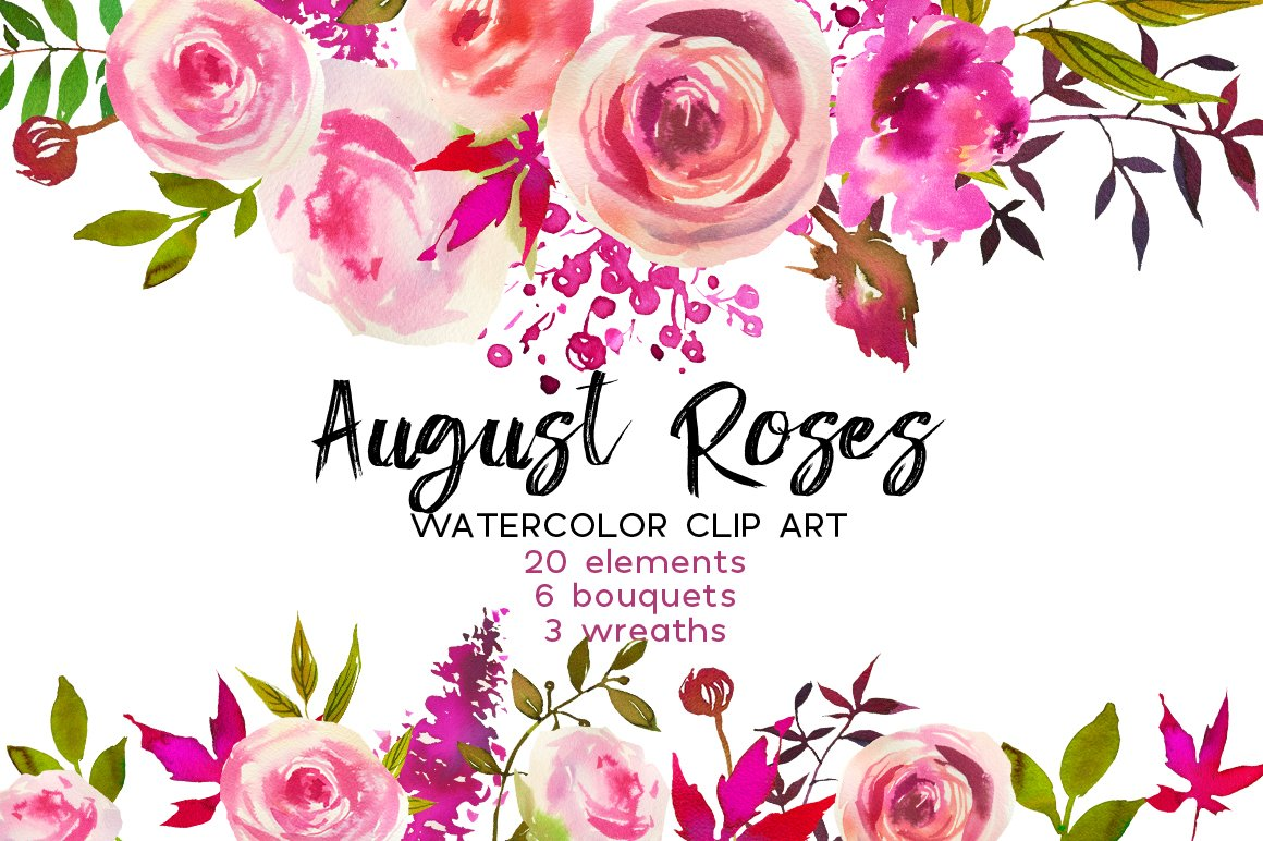 August Roses Watercolor Clip Art Illustrations