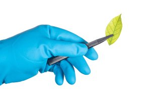 scientist hand in blue glove