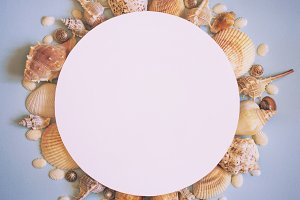 Sea summer travel Concept. Frame of sea shells on a blue backgro