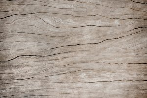 Texture surface wooden background