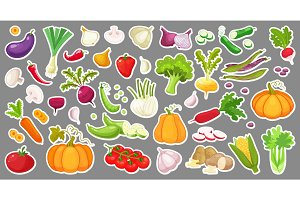 Big set of colorful vegetables. Isolated stickers of vegetables. Natural fresh organic vegetables.Cartoon style vector illustration.