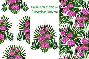Orchids Set