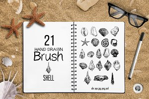 21 Sea Shell Brushes