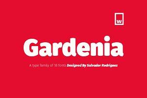 Gardenia Typeface 85%OFF