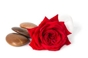 Red rose soap, herbal spa concept white background