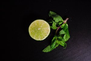 Mint and lime branch, top view