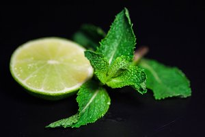 Mint and lime branch