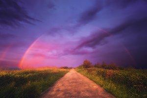 Path to Fantasyland