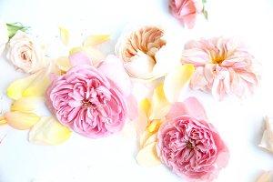 lay flat florals