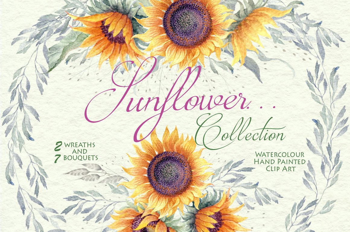 Sunflower... - Clipart Collection ~ Illustrations ...