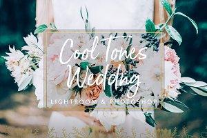 Cool Tones Wedding Presets LR & PS