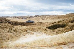 Dune landscpae in Denmark