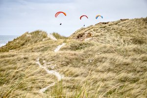 Paraglider on the beach in Summer