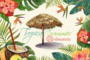 Tropical Summer Watercolor Clip Arts