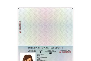 Open international passport template ~ Graphic Objects ~ Creative Market