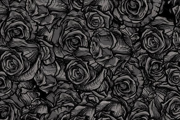 Roses background in Illustrations