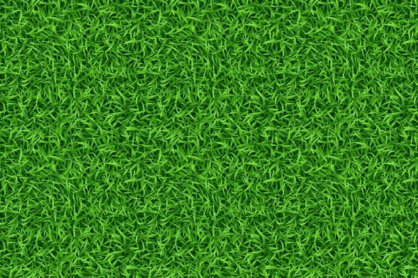 seamless green grass vector pattern pre designed illustrator graphics creative market seamless green grass vector pattern