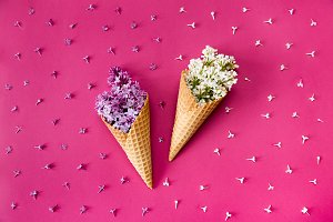Ice cream with lilac flowers