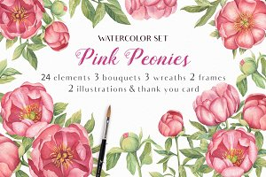 Pink Peonies - Watercolor Set