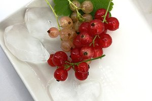 White and red currants
