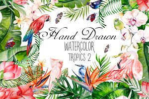 Hand Drawn watercolor TROPICS 2