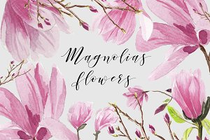 Magnolias Watercolor flowers
