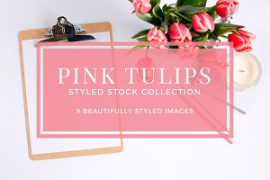 Pink Tulips Styled Stock