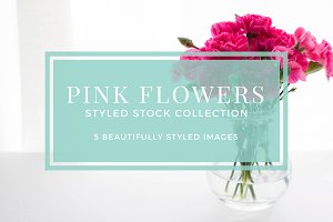 Pink Flowers Styled Stock