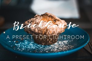 Brickhouse: Lightroom preset + Bonus